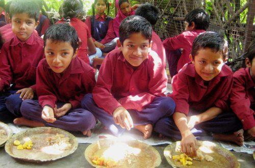 India - August 2012 199
